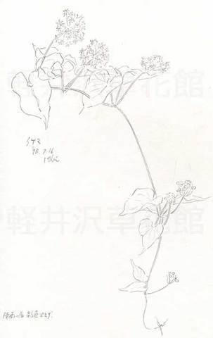 手帳19980716ike.jpg